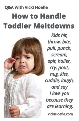 toddler meltdown